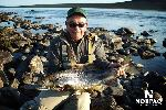 salmon-fly-fishing-quebec.jpg